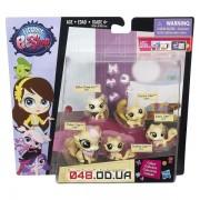 Игровой набор Littlest Pet Shop Большая удивительная семейка Кошечки B1961/B1902