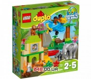 LEGO DUPLO  Вокруг света: Азия (10804)