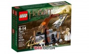 LEGO The Lord of the Rings Битва с Ведьминым Королём (79015)
