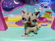 Фигурка Littlest pet shop кошка-стоячка бежевая с коричневыми полосками