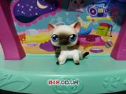 Фигурка Littlest pet shop кошка-стоячка серая с темно-серыми полосками