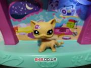 Фигурка Littlest pet shop кошка стоячка лавандовая с зелеными глазами