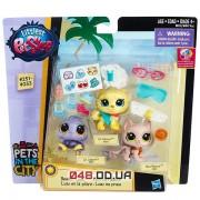Игровой набор Littlest pet shop Зверюшки-модницы на пляже (B8181/B4847)