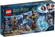 LEGO Harry Potter Экспекто Патронум! (75945)