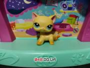 Фигурка Littlest pet shop кошка-стоячка #339 жёлтая Бруклин с магнитом
