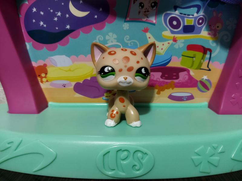 Фигурка Littlest pet shop кошка-стоячка с леопардовыми пятнышками на голове